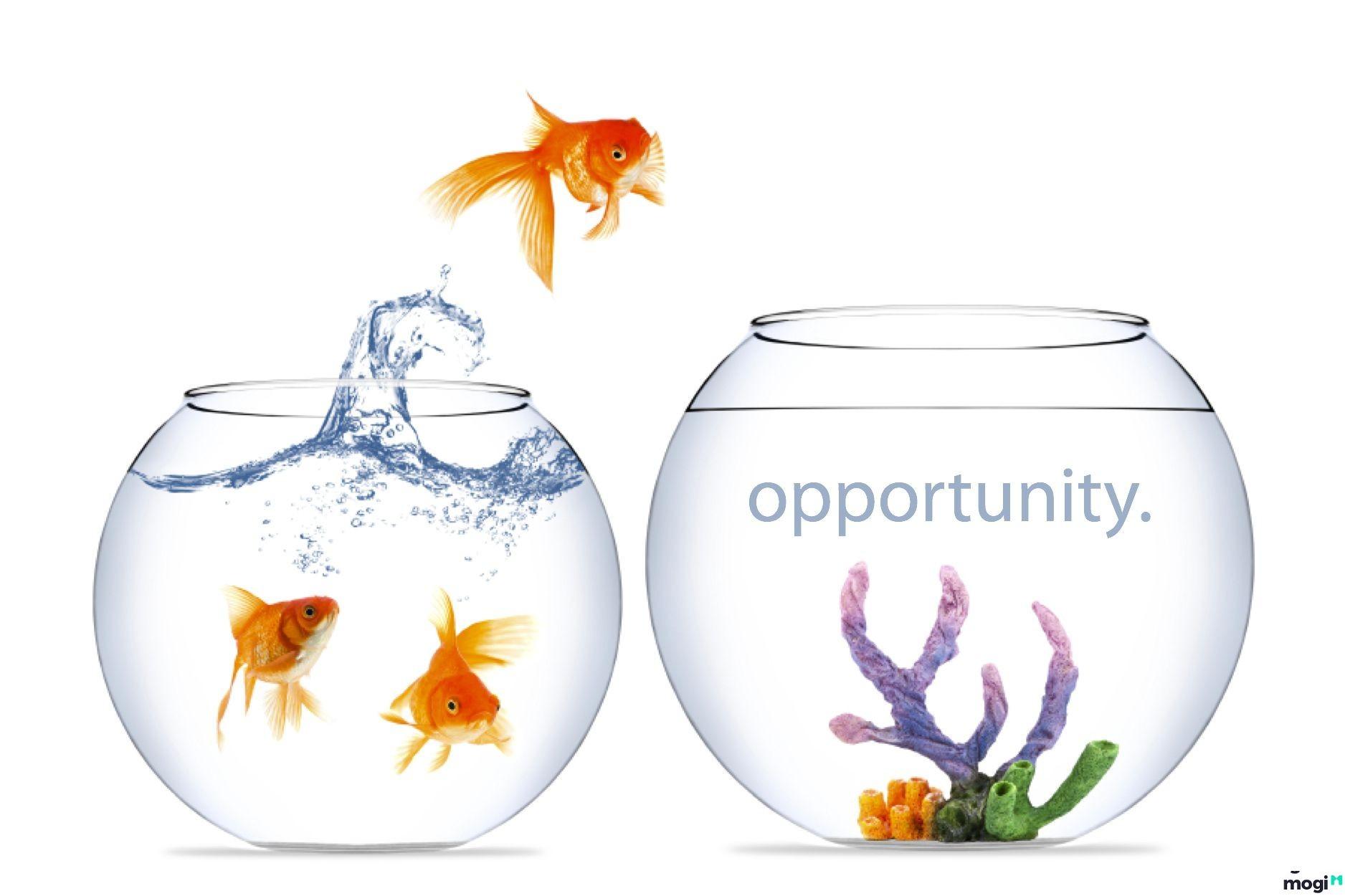 Luật mua bán nhà đất cơ hội và những thách thức