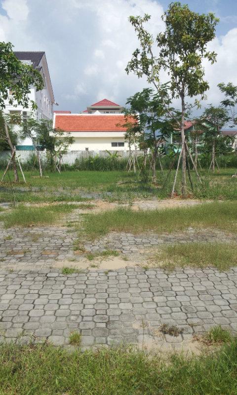 Cho thuê đất Đà Nẵng gần cầu Rồng giá 5,5 triệu
