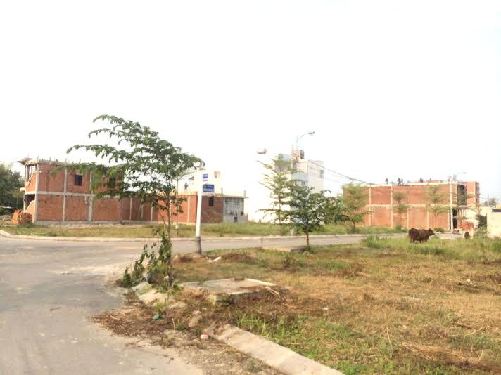 Cho thuê đất nằm mặt tiền đường Võ Văn Kiệt thuận tiện kinh doanh nhà hàng